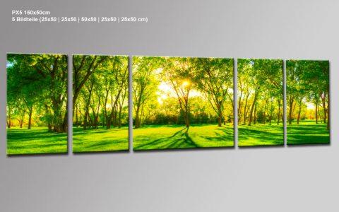 central park panorama 5 bilder px520053 xxl leinwand. Black Bedroom Furniture Sets. Home Design Ideas