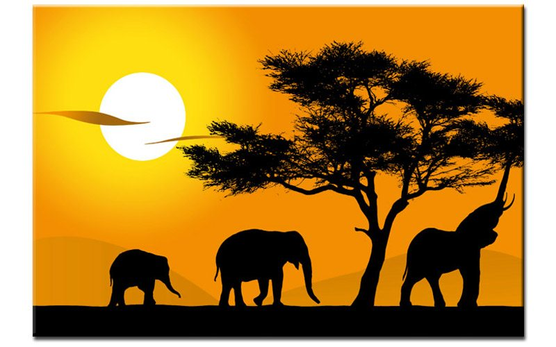 safari sunset leinwand elefanten afrika a00719 die leinwandfabrik. Black Bedroom Furniture Sets. Home Design Ideas