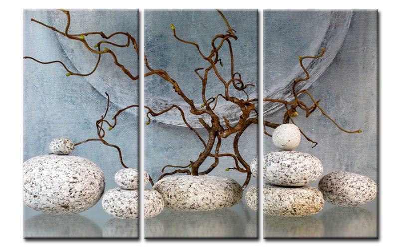 bonsai natur leinwand 3 bilder wellness feng shui c00970. Black Bedroom Furniture Sets. Home Design Ideas