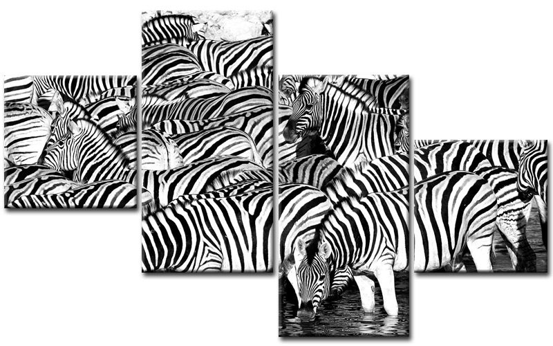 zebra herde leinwand 4 bilder black afrika m40711 xxl die leinwandfabrik. Black Bedroom Furniture Sets. Home Design Ideas