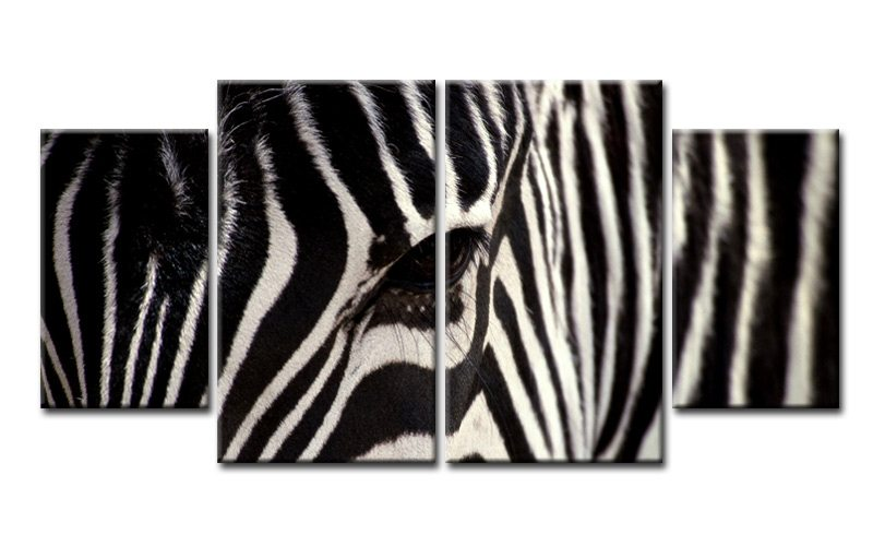 zebra animal leinwand 4 bilder schwarz wei m40555 xl die leinwandfabrik. Black Bedroom Furniture Sets. Home Design Ideas