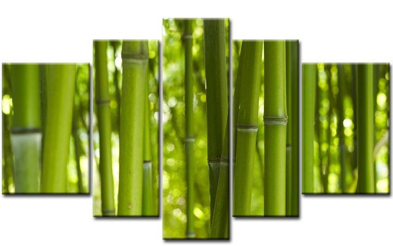 bambus wald leinwand 5 bilder natur m50148 xxl die. Black Bedroom Furniture Sets. Home Design Ideas