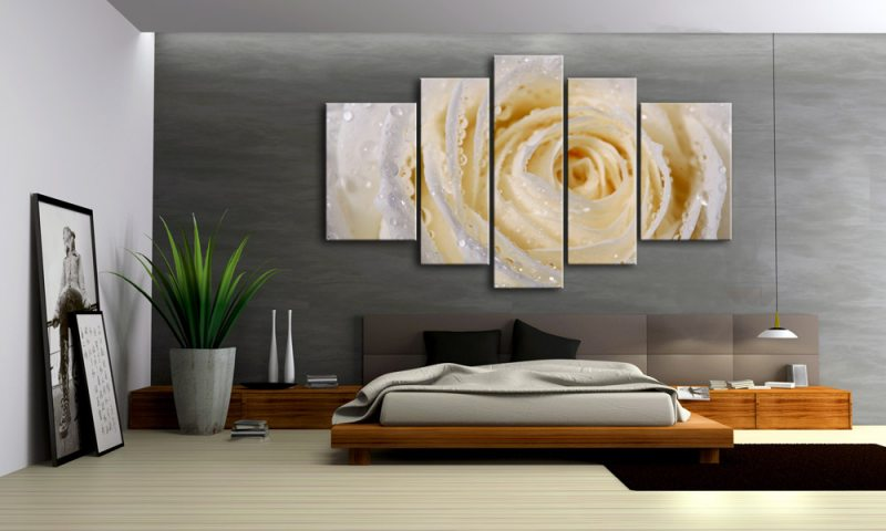 rose creme leinwand 5 bilder wassertropfen m50356 xxl. Black Bedroom Furniture Sets. Home Design Ideas