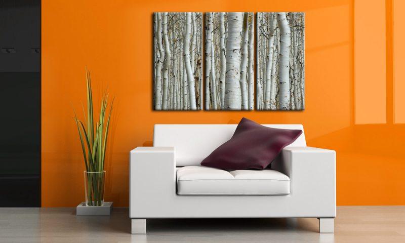 birkenwald leinwand 3 bilder wei e birken forest c00886 die leinwandfabrik. Black Bedroom Furniture Sets. Home Design Ideas