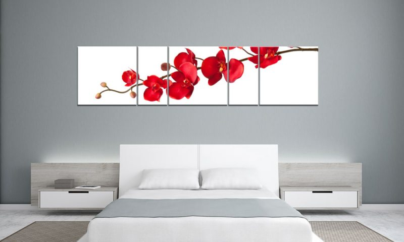 fire orchidee panorama 5 bilder p500044 xxl leinwand die leinwandfabrik. Black Bedroom Furniture Sets. Home Design Ideas