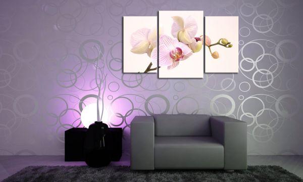 Bild Mehrteilig Lila : White Orchidee Leinwandbild Mehrteilig  Die Leinwandfabrik
