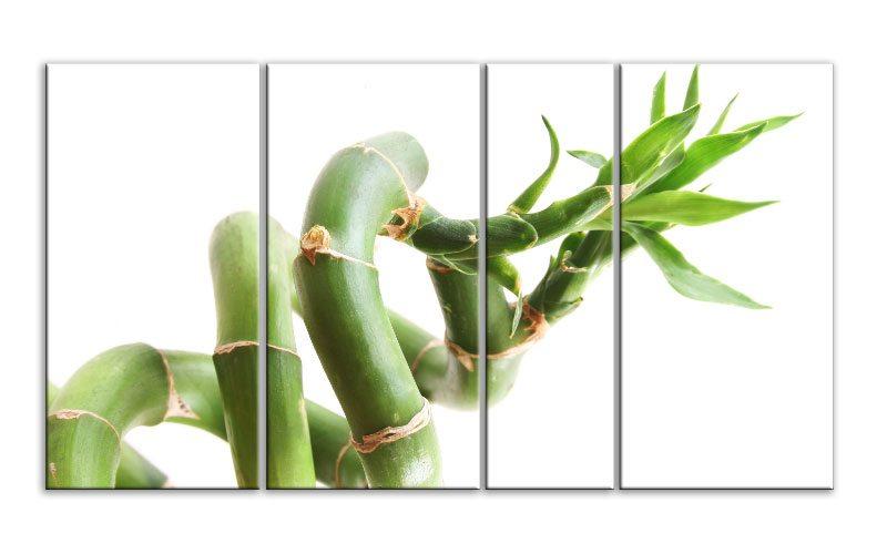 bamboo curl leinwand 4 bilder xxl bild d00872 die leinwandfabrik. Black Bedroom Furniture Sets. Home Design Ideas